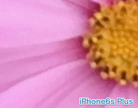 iPhon6s-camera-10