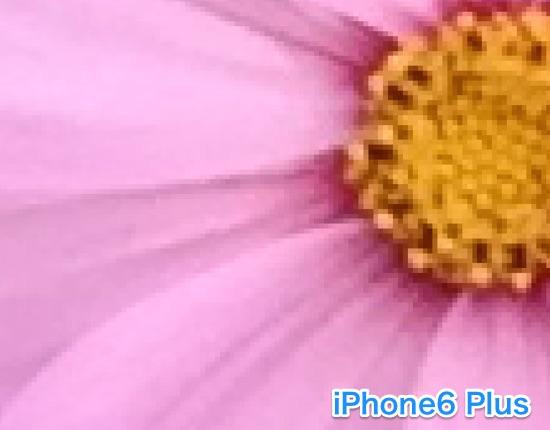iPhon6s-camera-11